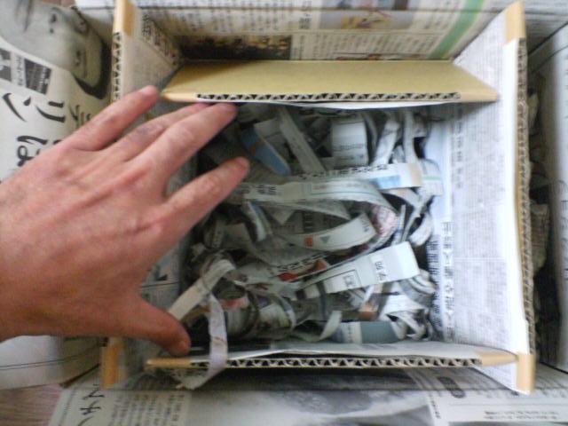 ヘルマンリクガメの梱包3